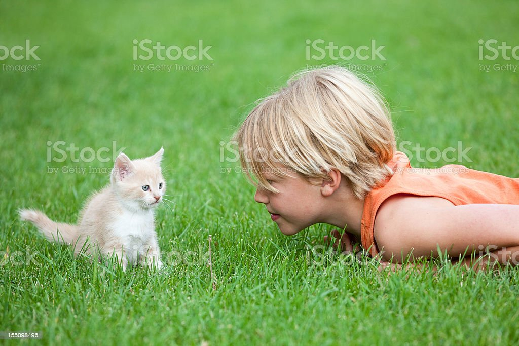 Young Boy Playing with a Cute Kitten royalty-free stock photo