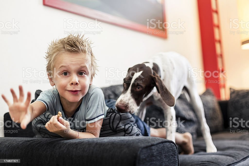 Young boy playing with his Dog royalty-free stock photo