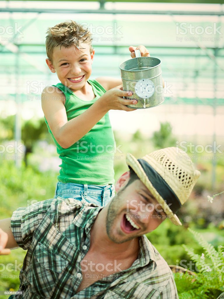 Young boy playing with his father in a green house stock photo