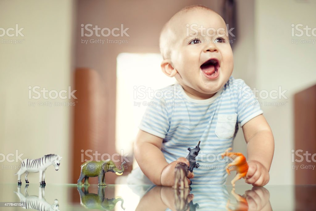 Young boy playing with toy animals stock photo