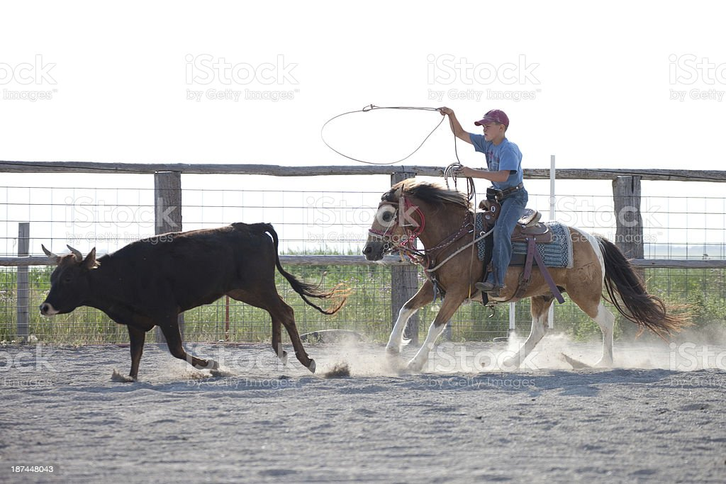 Young Boy Riding Horse Practicing Rodeo Roping a Steer royalty-free stock photo