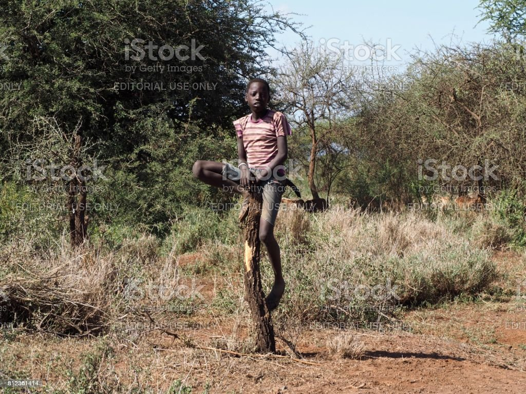 A young boy sits on a post looking after his cattle near Amboseli, Kenya stock photo