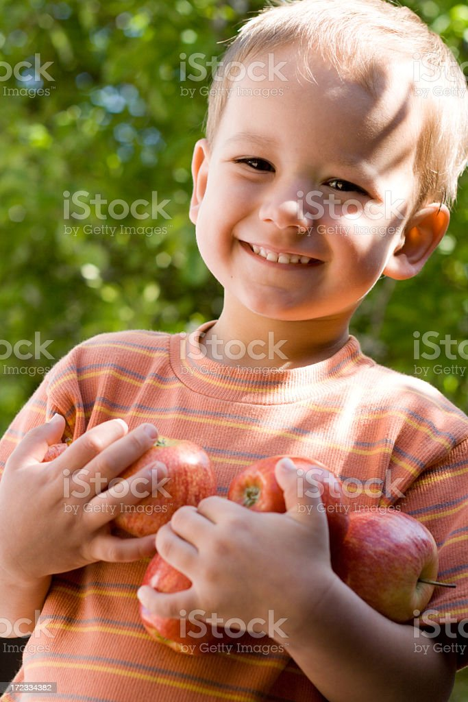 Young boy smiling and holding apples stock photo