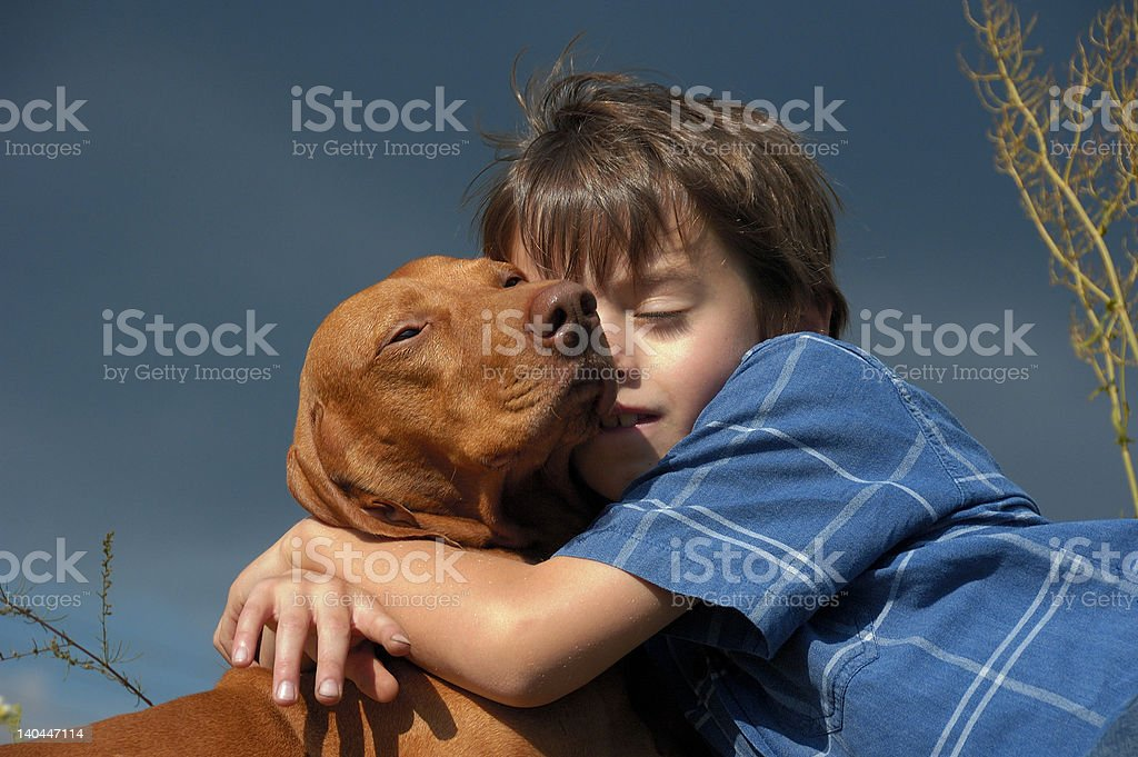 Young Boy With A Dog royalty-free stock photo