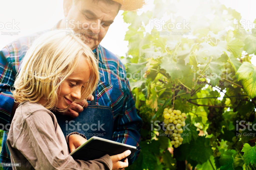 Young Boy with Tablet and Grandfather in Vineyard stock photo