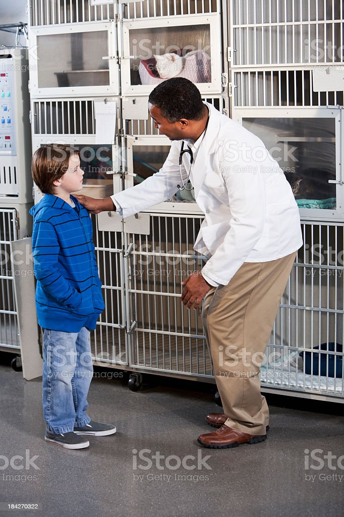 Young boy with veterinarian in animal clinic stock photo