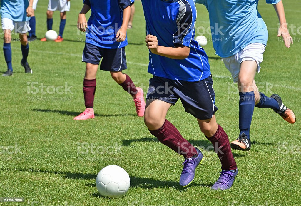 Young boys are playing soccer stock photo