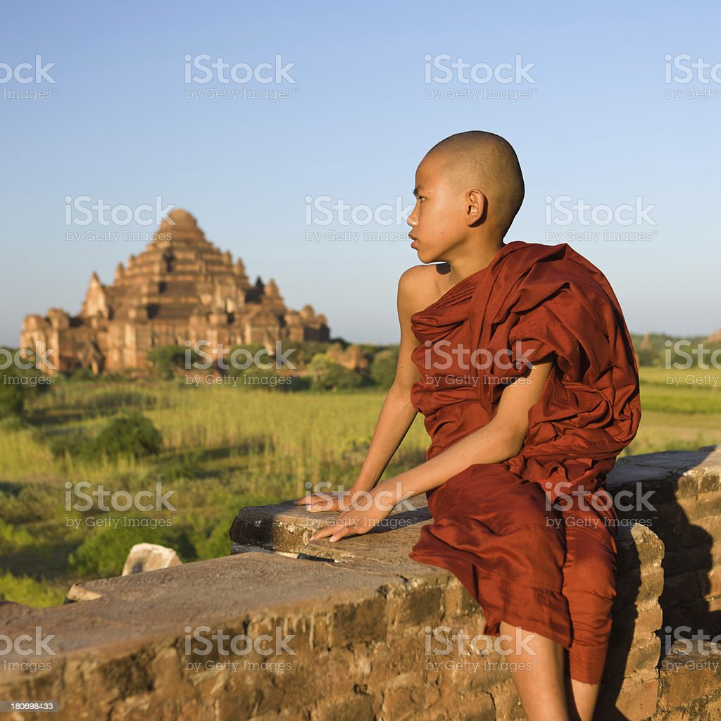 Young Buddhist monk stock photo