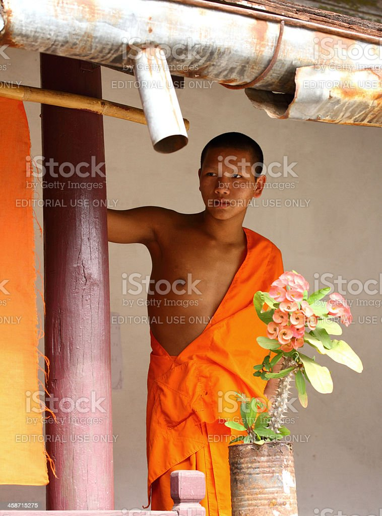 Young Buddhist monk royalty-free stock photo