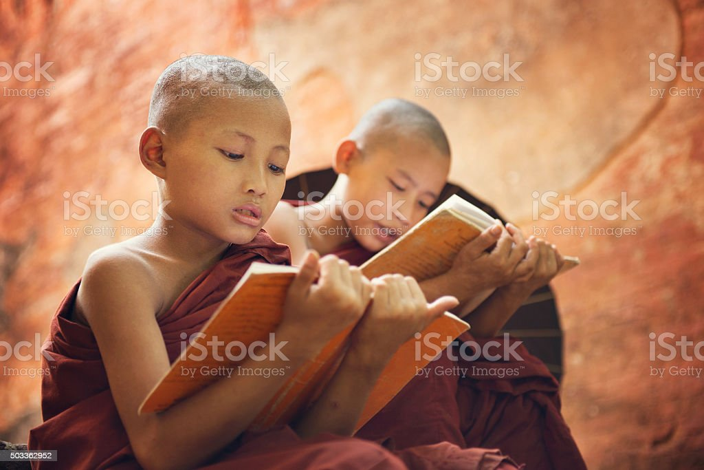 Young Buddhist novice monks reading outside temple stock photo