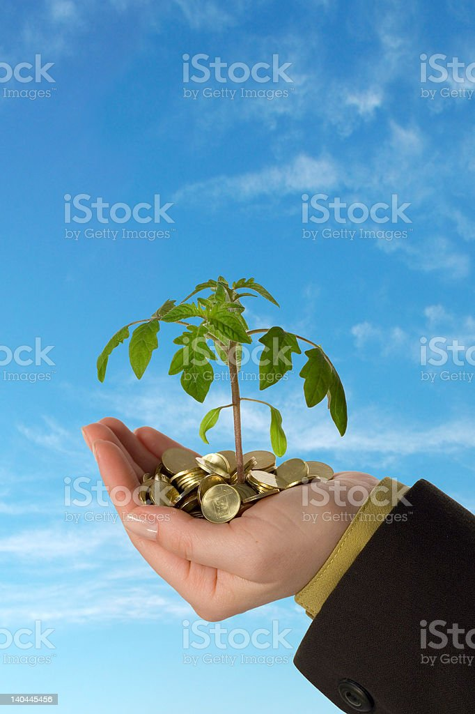 Young business series royalty-free stock photo