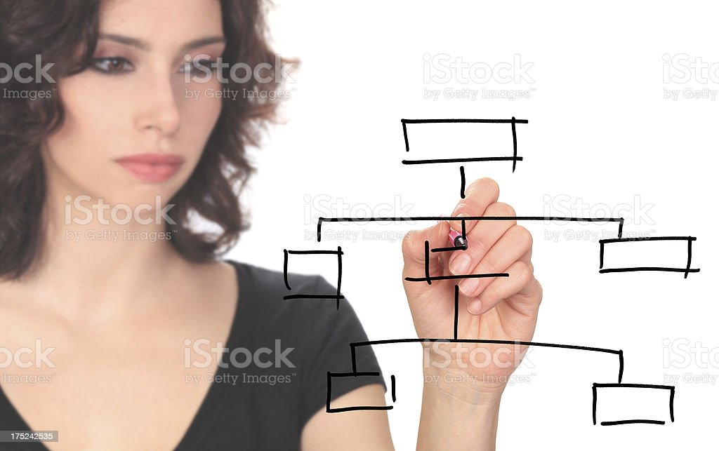 Young Businesswoman Empty Diagram royalty-free stock photo