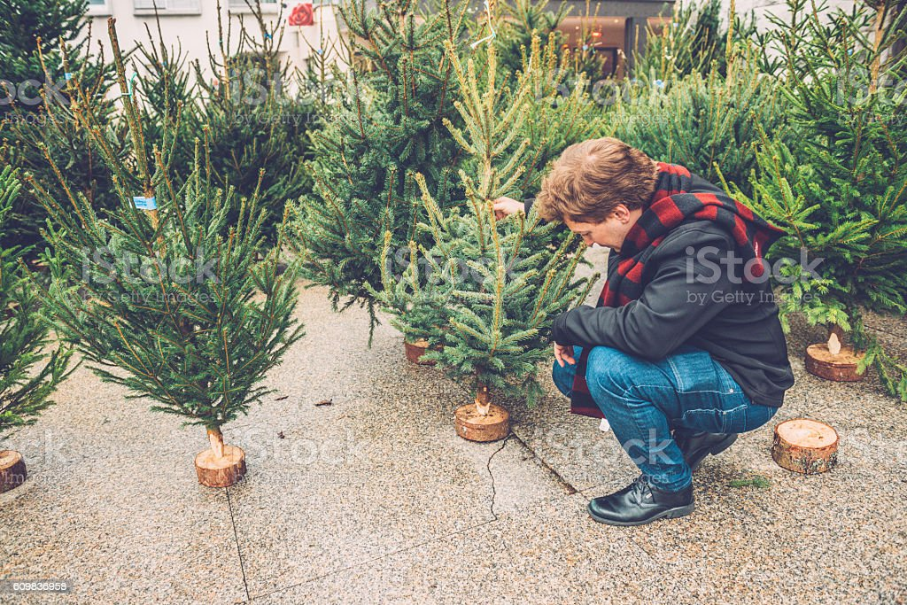 Young Caucasian Man Choosing Christmas Tree, City Market, Europe stock photo
