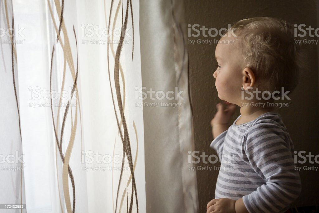 Young Child Looking Through Curtains royalty-free stock photo