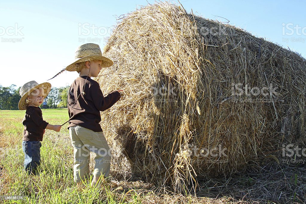Young Children Playing on Farm with Hay Bale royalty-free stock photo