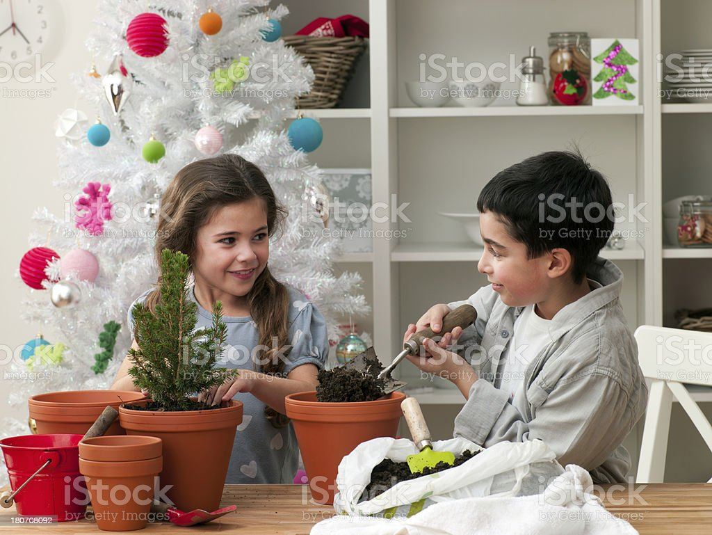 Young Children Potting Plants royalty-free stock photo