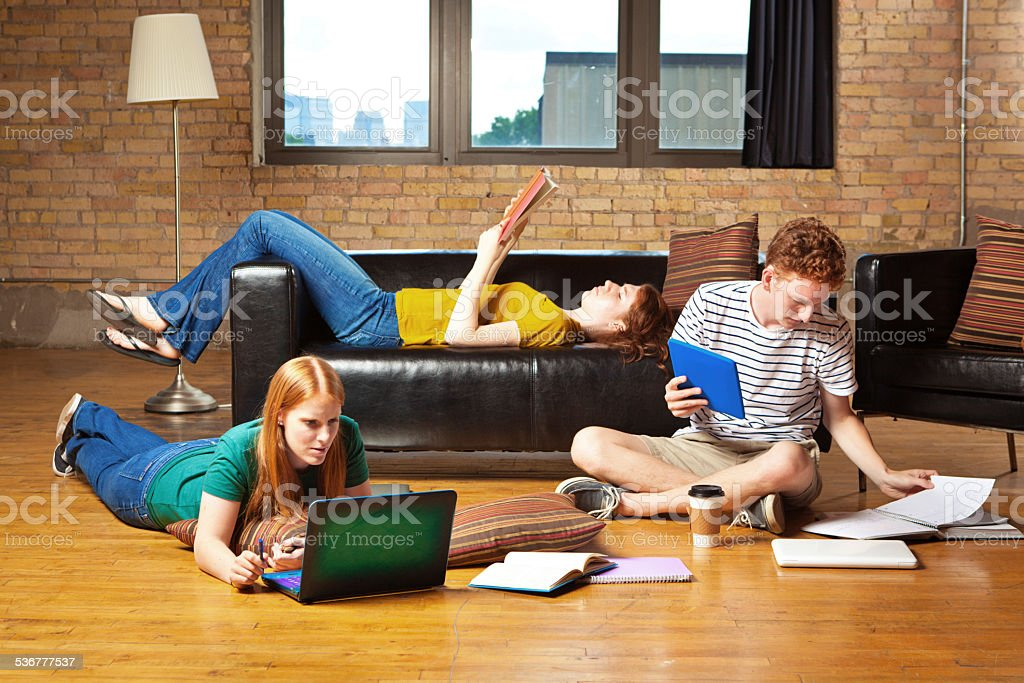 Young College Students Studying Together for Exams stock photo