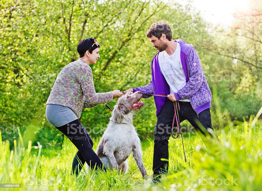 Young couple arguing in dog royalty-free stock photo