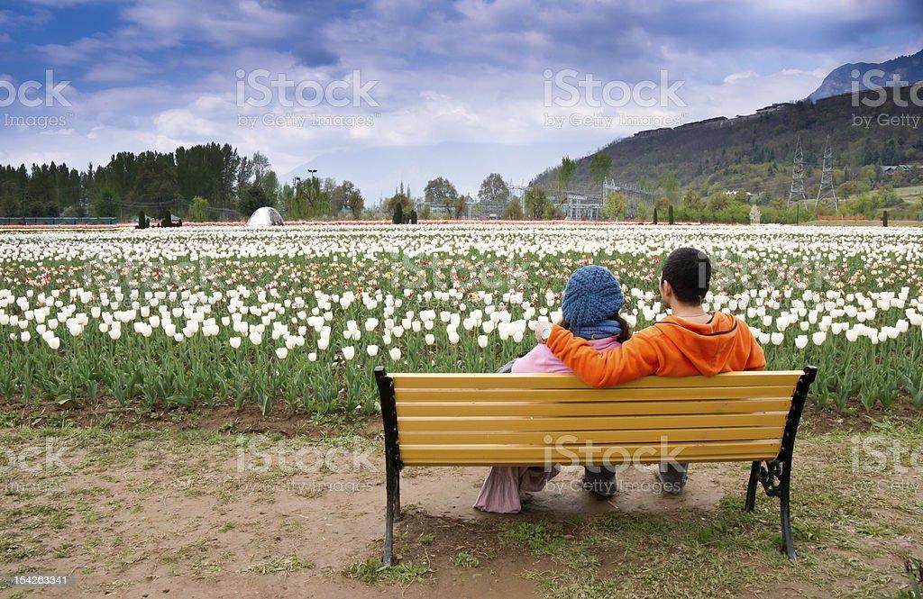 Young couple in tulip garden stock photo
