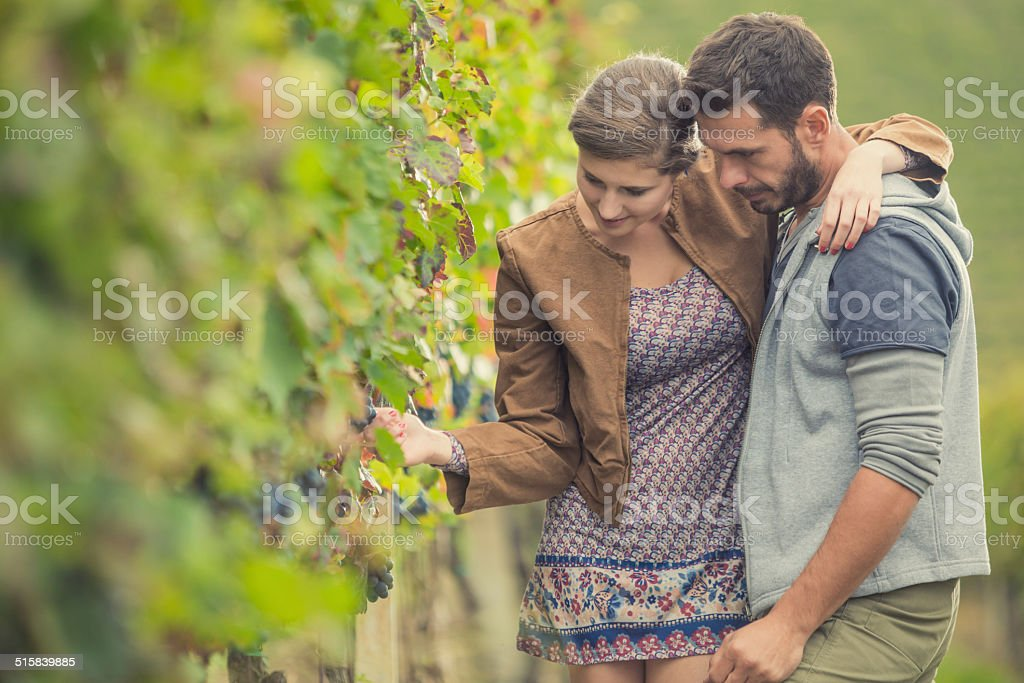 Young couple in vineyard stock photo