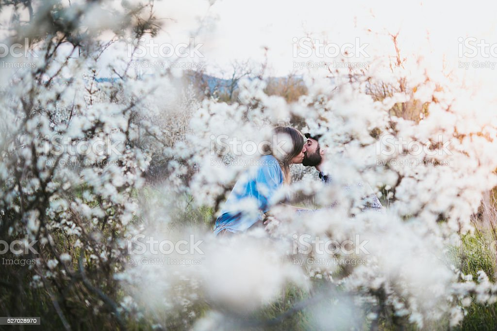 young couple kissing, outdoor, spring stock photo