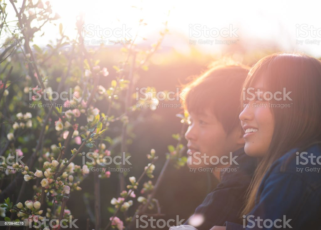 Young couple looking at quince flowers in the evening stock photo