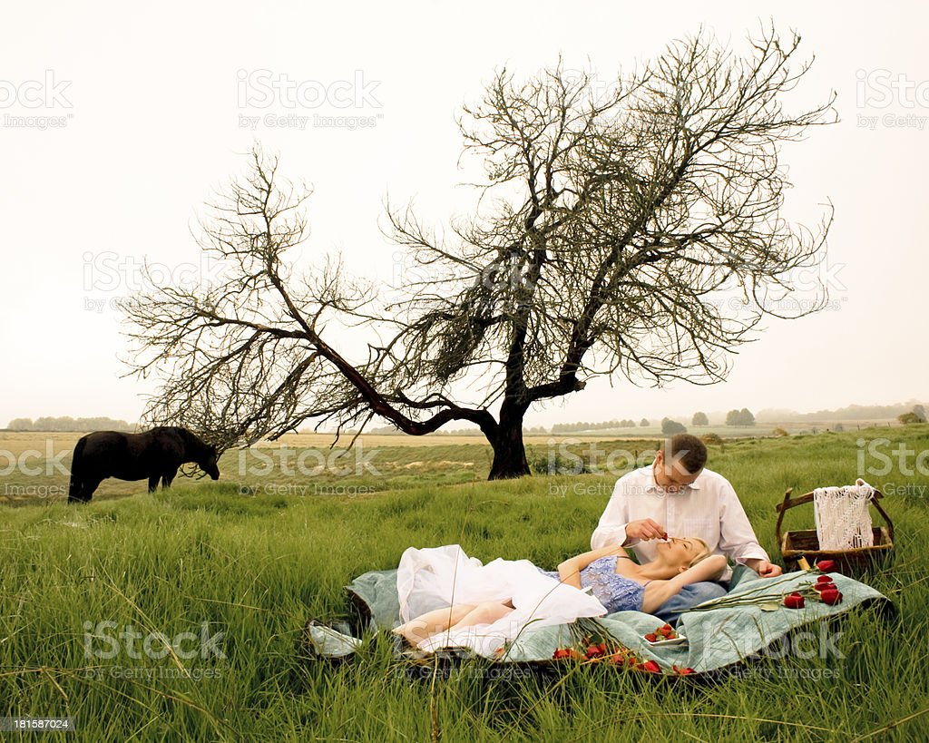 Young couple picnicing in grass field with tree background royalty-free stock photo