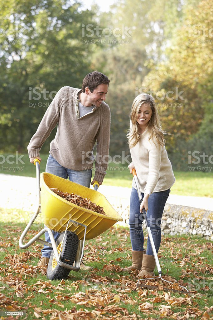 Young couple raking autumn leaves in garden stock photo