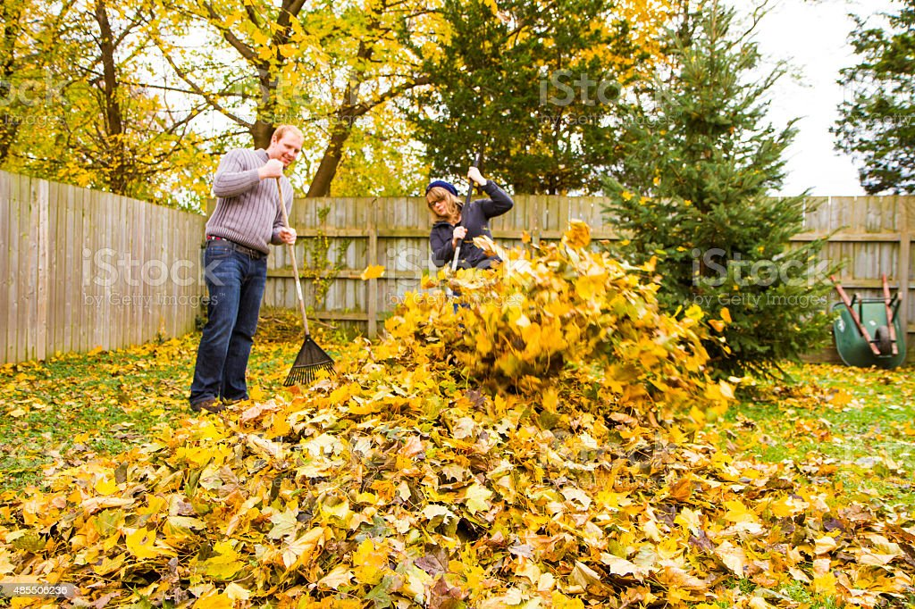 Young Couple raking leaves in the yard. Autumn colors stock photo