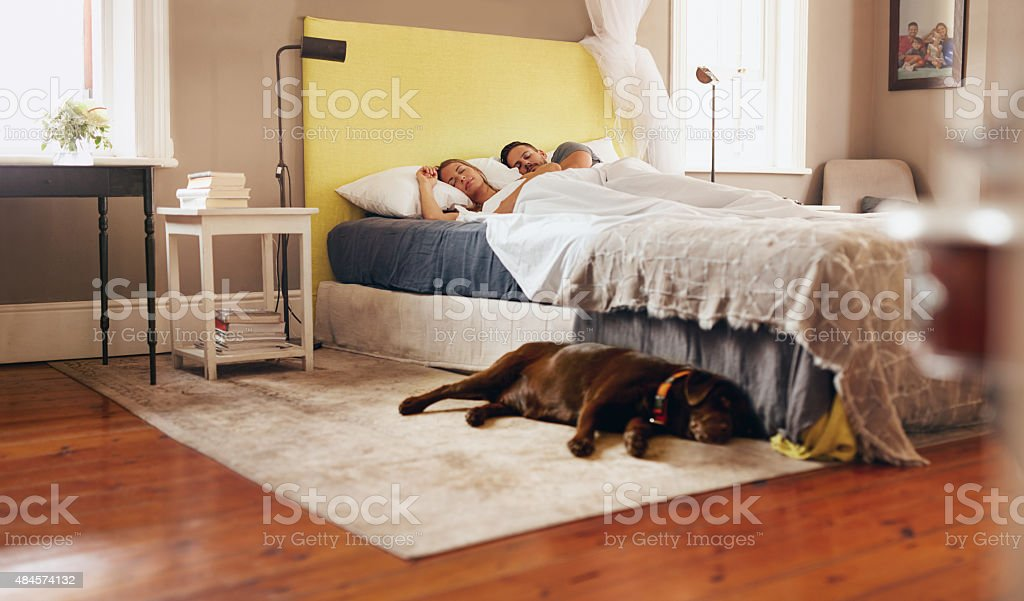 Young couple sleeping comfortably on bed with dog on floor stock photo