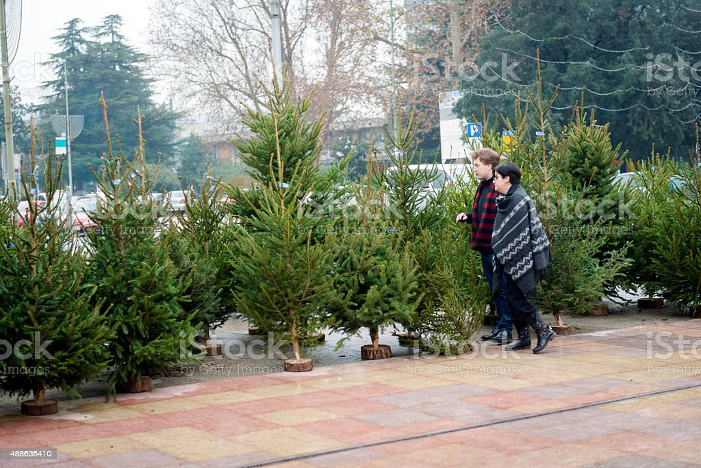 Young Couple Standing by  Christmas Tree Lot, City Center, Europe stock photo