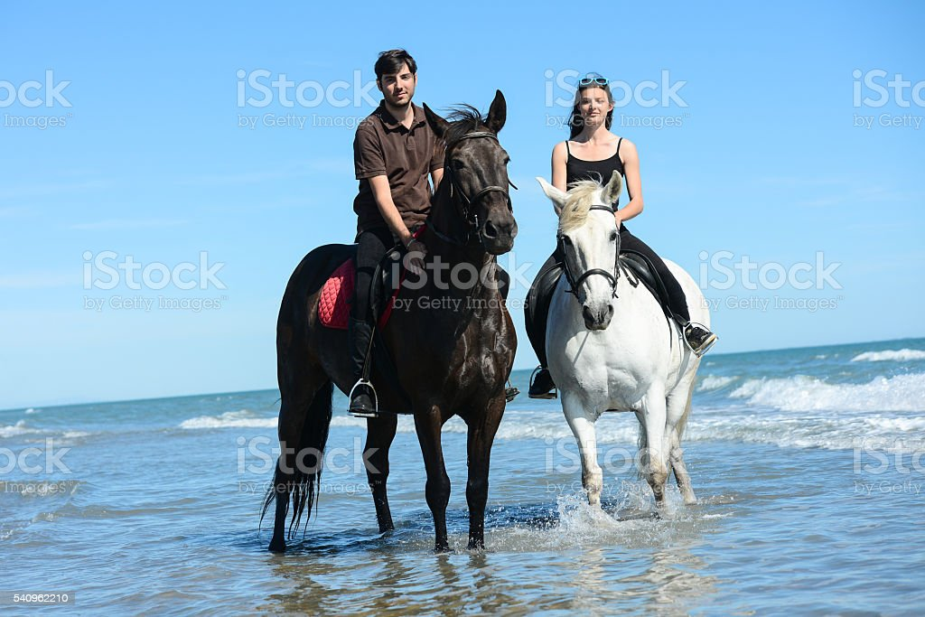 young couple vacation riding horses on beach sunny summer day stock photo