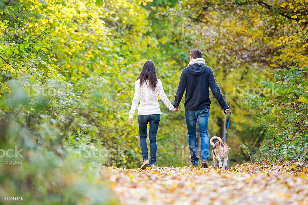Young couple with dog on a walk in autumn forest stock photo