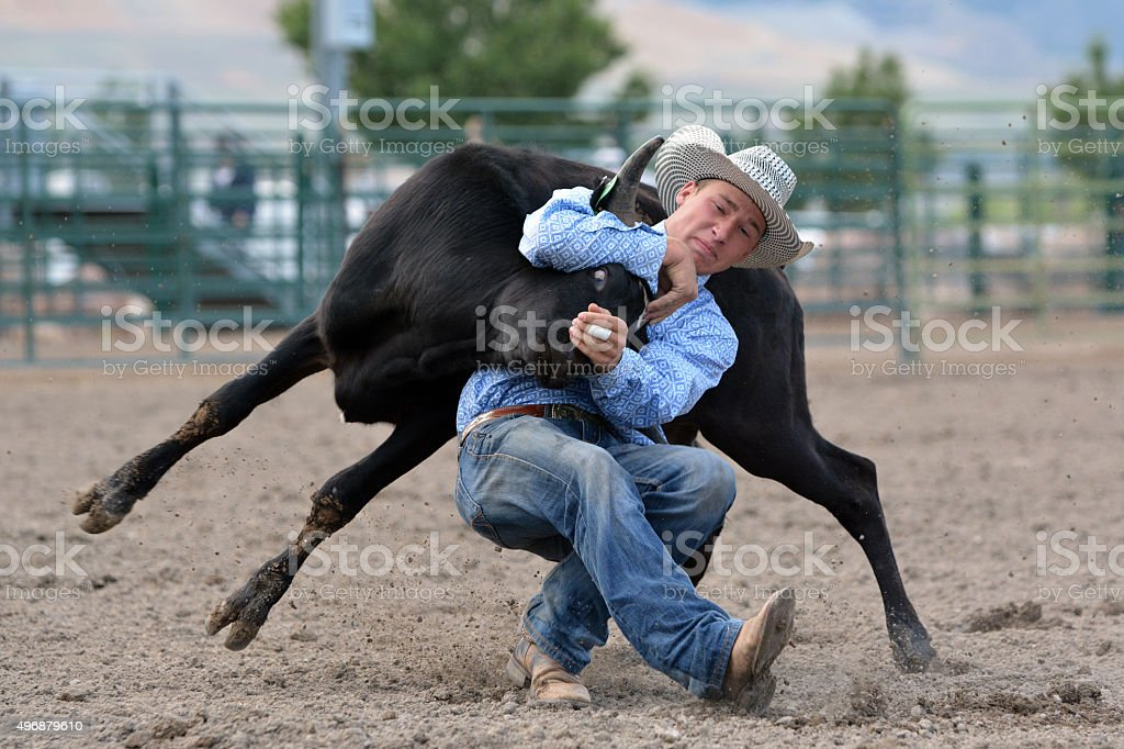 Young Cowboy Steer Wrestling stock photo