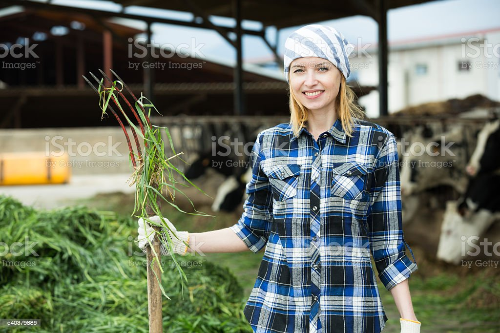 Young cowgirl collecting grass for cows stock photo
