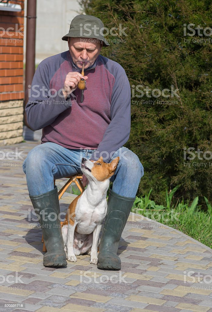 Young dog shows dissatisfaction of master's smoking stock photo