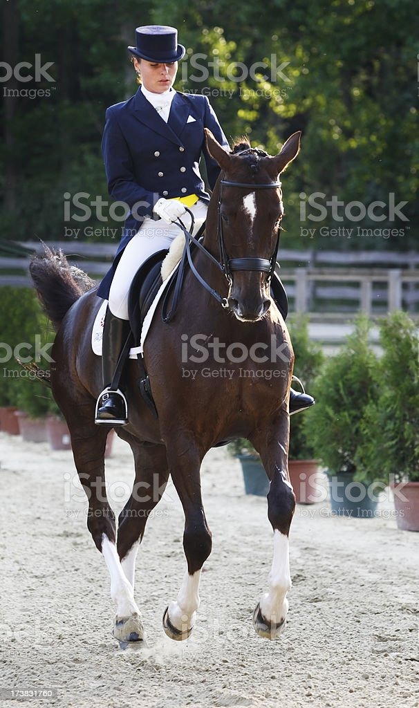 Young dressage rider stock photo