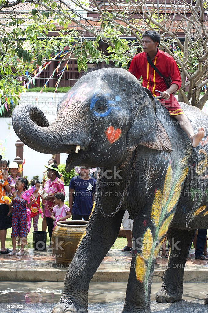 Young Elephant dance in water festival. royalty-free stock photo