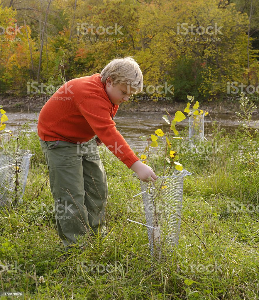 Young Enviromentalist stock photo