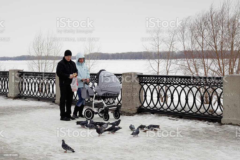Young family feeding birds stock photo