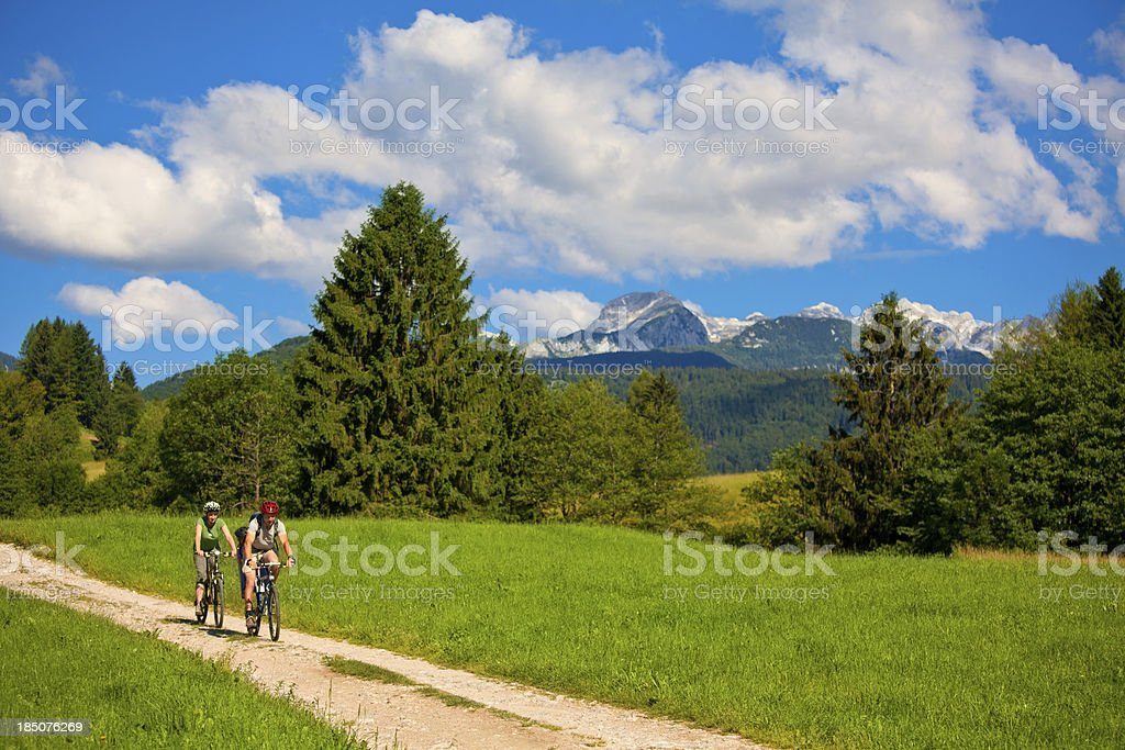 Young Family On Bikes stock photo