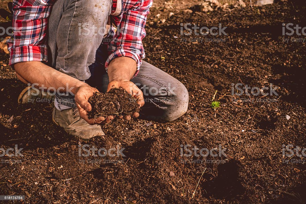 Young Farmer checking the soil on his field stock photo