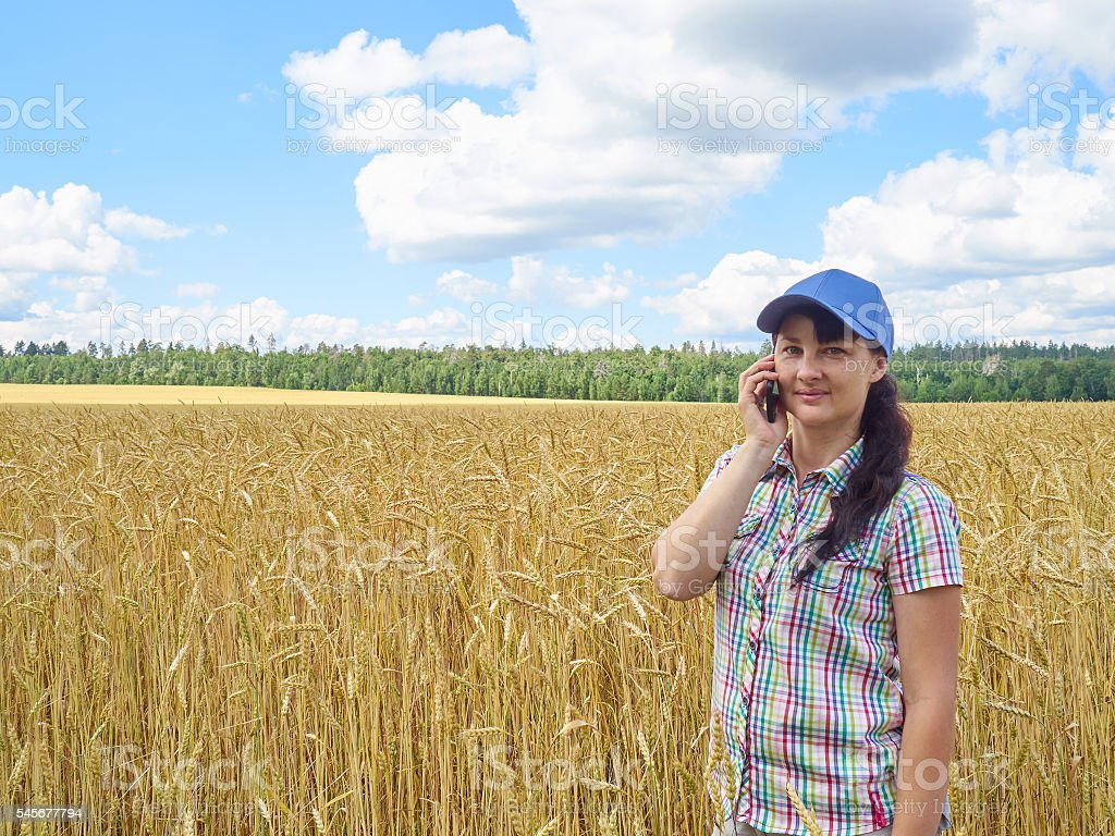Young farmer girl standing in yellow wheat field and talk stock photo
