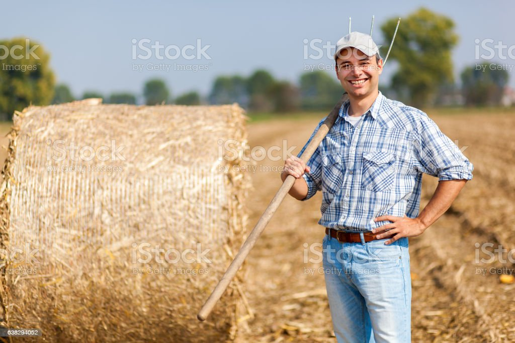 Young farmer in a meadow stock photo