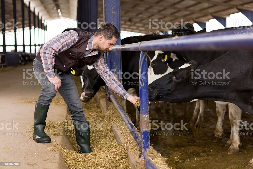 Young Farmer stock photo