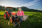 Young Farmer recorded growth of productivity sitting
