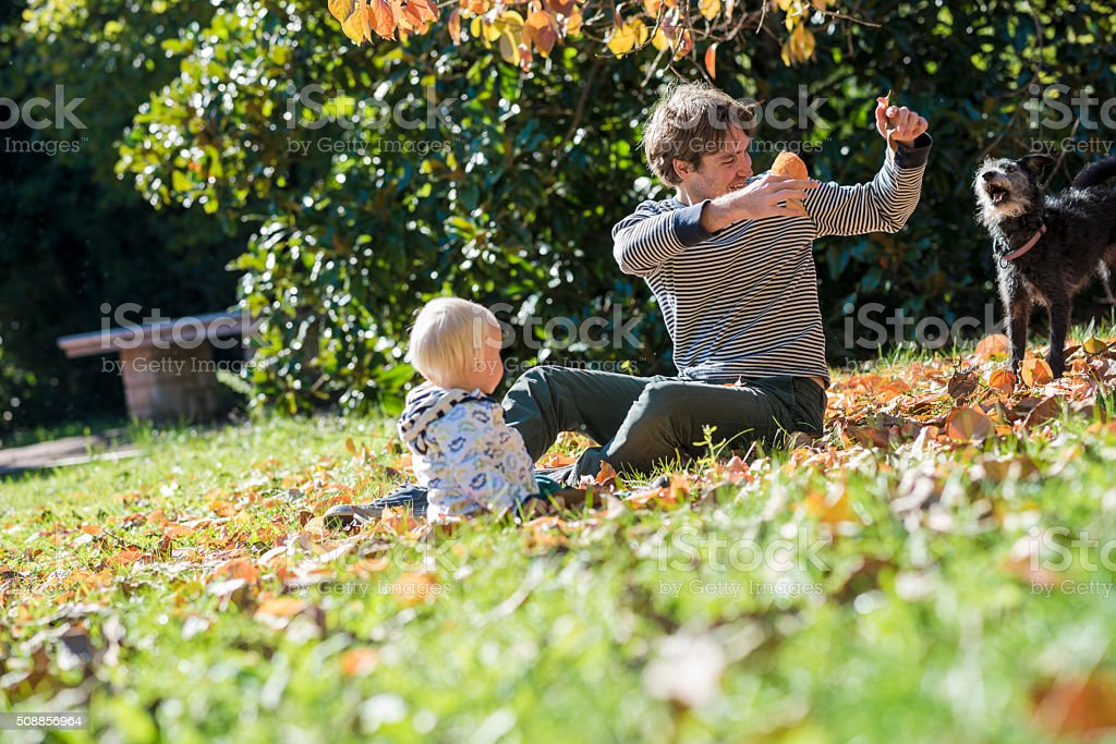 Young father and his toddler child sitting in autumn grass stock photo