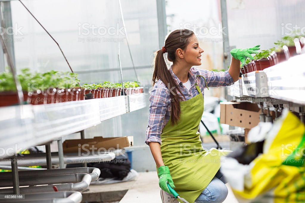 Young female botanist stock photo