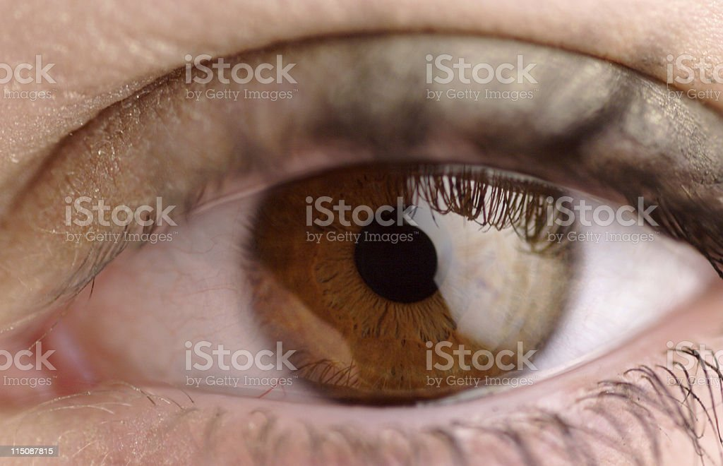 young female brown eye royalty-free stock photo