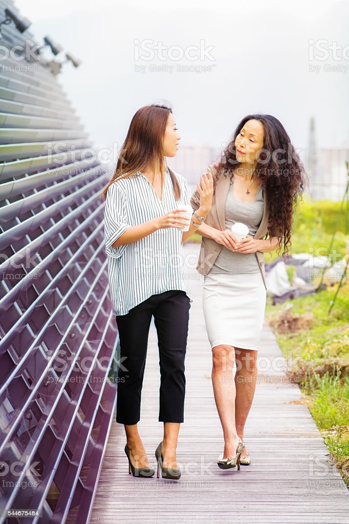Young Female entrepreneur presents roof garden project to investor stock photo